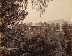 [The Retreat, Mashobra, near Simla.]